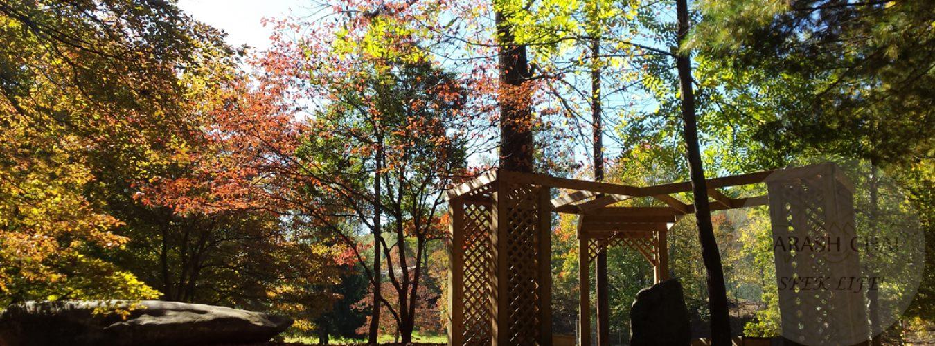Darash Chai – Seek Life